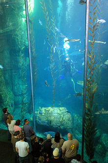 photo about Aquarium of the Pacific Coupons Printable named Aquarium of the Pacific - Wikipedia
