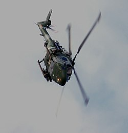 Blue Eagle Lynx.