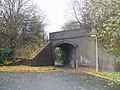 Blue brick railway bridge - geograph.org.uk - 286154.jpg