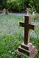 Bluebells in St Nicholas' churchyard, Brockenhurst - geograph.org.uk - 170437.jpg