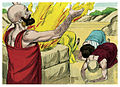 Book of Job Chapter 42-2 (Bible Illustrations by Sweet Media).jpg