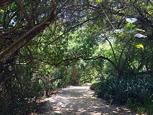 Península (Rio de Janeiro) - Jardim das Frutíferas, one of the many gardens of Península.