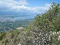 Bossey, France - panoramio (9).jpg