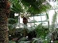 Botanická zahrada Liberec (03).jpg