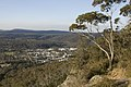 Bowral NSW 2576, Australia - panoramio (132).jpg