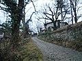Bozhentsi,калдаръмени улички в Боженци - panoramio.jpg