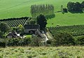 Breaky Bottom Vineyards - geograph.org.uk - 1528129.jpg