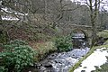 Bridge over the Spurlswood Beck, Hamsterley Forest - geograph.org.uk - 76597.jpg