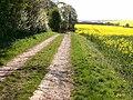 Bridleway landscape - geograph.org.uk - 429805.jpg