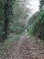 Bridleway to Leatherhead - geograph.org.uk - 1105730.jpg