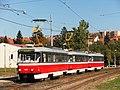 Brno, Bohunice, Dlouhá, zvláštní jízda BMHD.cz 2012 (01).jpg