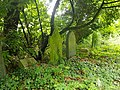 Brockley & Ladywell Cemeteries 20170905 102154 (40672032783).jpg