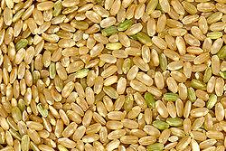 Gạo lức (gạo toàn phần) là loại thực phẩm giàu Kali