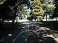 Bucuresti, Romania, Parcul Herastrau (Imagine din parc); B-II-a-A-18802 (6).JPG