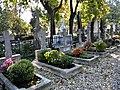 Bucuresti, Romania. Cimitirul Bellu Catolic. Unul din cele 7 morminte care fac minuni.jpg