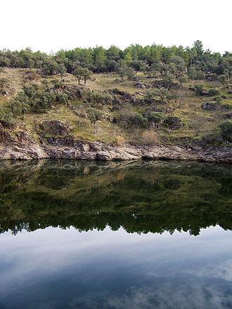 Lozoya (river) - Lozoya river.