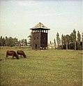 Bundesarchiv B 145 Bild-F004246-0024, Auschwitz, Gelände des ehemaligen KZ.jpg