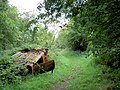 Burnt out car on bridleway. - geograph.org.uk - 528978.jpg