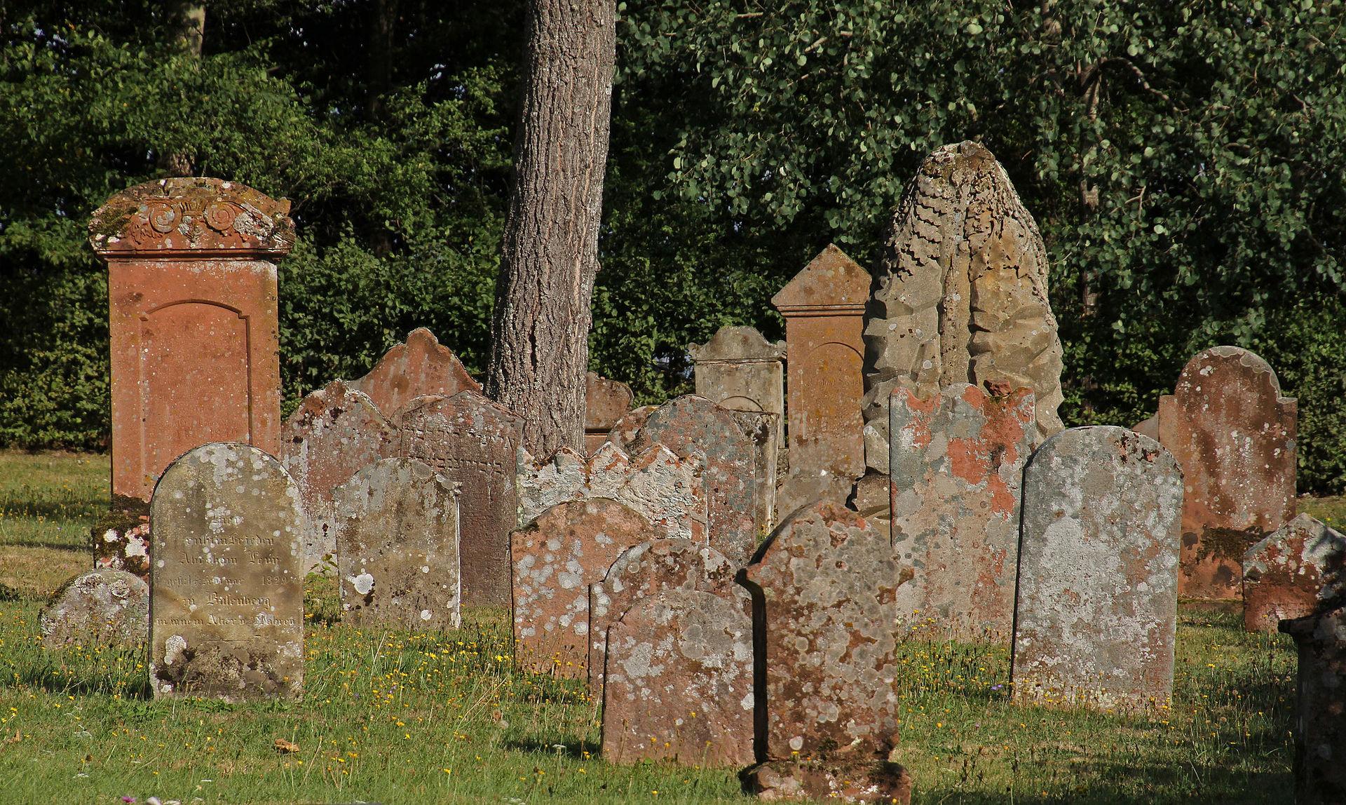 Busenberg-Judenfriedhof-25-gje.jpg
