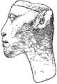 C+B-Egypt-Fig11-AkhnatenMummyHead.PNG