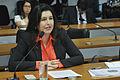 CDR - Comissão de Desenvolvimento Regional e Turismo (22673472533).jpg