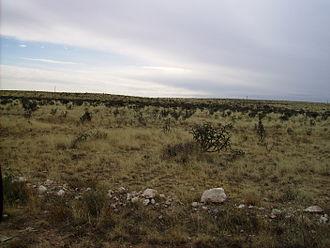 Eddy County, New Mexico - Image: Cabinetetc 011