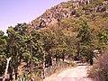 Camino A Tateposco - panoramio.jpg