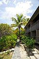 Caneel Bay Beach Front Rooms by Turtle Bay 6.jpg