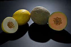 Cantaloupe and canary melon.jpg
