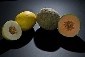 Melon - Canary melon and cantaloupe