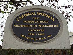 Cardinal wiseman (ludra)