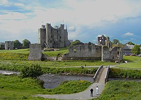 Castle In Trim, County Meath - geograph.org.uk - 303169.jpg