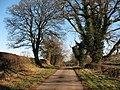 Catton Lane Topcliffe - geograph.org.uk - 333662.jpg