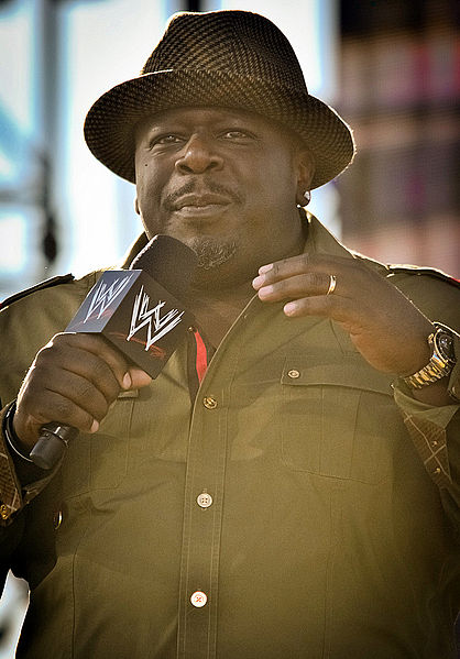 Cedric the Entertainer -Career