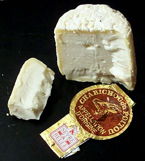 Chabichou soft, unpasteurized, natural-rind French goat cheese