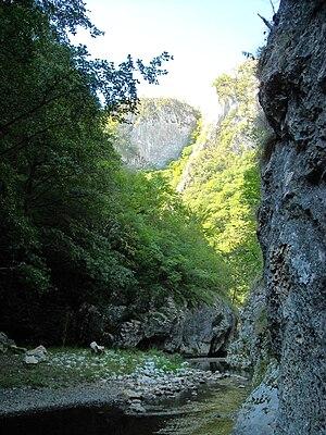 Metaliferi Mountains - Mada Gorge (Cheile Măzii or Madei) in the Munţii Metaliferi mountains