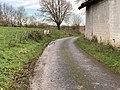 Chemin Mares Perrex 3.jpg