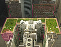 Chicago City Hall green roof edit prospective compare 2.jpg
