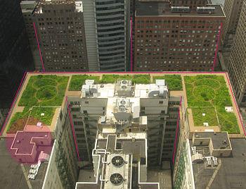 English: Chicago City Hall Green Roof