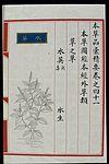 Chinese Materia Medica illustration, Ming; Oenanthe javanica Wellcome L0039311.jpg