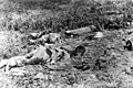 Chinese bodies on the Hook late July 1953 (AWM 044753).jpg