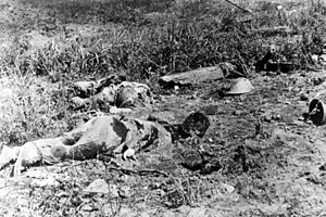 Several lifeless bodies lying in a field. To the left in the middle ground a soldier lies face down in the dirt, while another lies face up with arms outstretched among the grass behind him. Broken vegetation is strewn around the position, while to the right, two helmets lie on the ground.