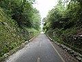 Ciclovia Alpe Adria.jpg