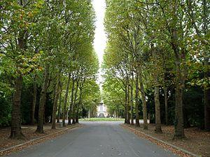 Cimetière parisien de Bagneux - Image: Cimetiere de bagneux allee centrale