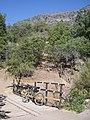 Cipreses (Ranchillo). - panoramio.jpg