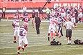 Cleveland Browns vs. Atlanta Falcons (28514715784).jpg