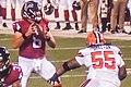Cleveland Browns vs. Atlanta Falcons (28848859650).jpg