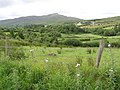 Cloontagh Townland - geograph.org.uk - 1391621.jpg