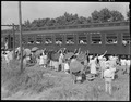 Closing of the Jerome Relocation Center, Denson, Arkansas. The whistle blows, the train jerks forwa . . . - NARA - 539687.tif