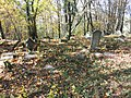 Cmentarz żydowski w Białej 3.jpg
